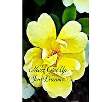 Never Give Up Your Dreams Photographic Print