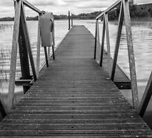 Boardwalk 2 by Martina Fagan
