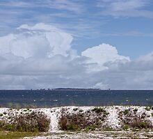 Gulf Coast Beauty by designingjudy