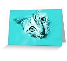 Feline in Turquoise  Greeting Card