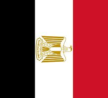 Flag of Egypt Phone Case by Myscha Theriault