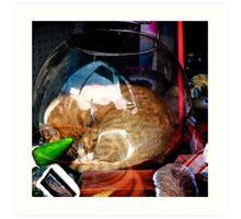 Ironic Cat Art Print