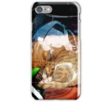 Ironic Cat iPhone Case/Skin