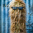 cactus joe by kevin  caldwell