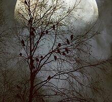 Black Birds Singing in the Dead of Night by John Rivera