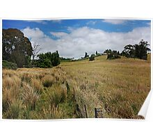 Fields, fences and farm Poster