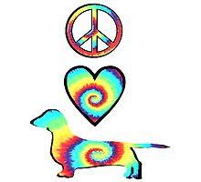 Peace Love Dachshunds by lacedupsk8r