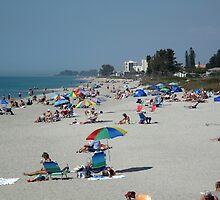 Sunny Venice Beach Florida by annlw582