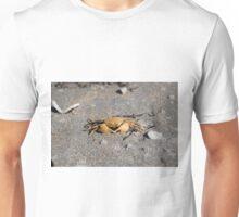 Crab @ Warrington Beach - Dunedin New Zealand Unisex T-Shirt