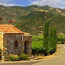Chapel In The Vineyard by James Eddy