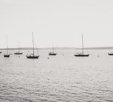 Parade of Sailboats by Elizabeth Thomas