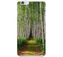 White Birch Path iPhone Case/Skin