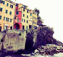 Manarola, Liguria, Italy by Amber Elen-Forbat
