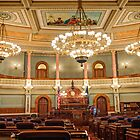 Kansas Senate 2013 by Paul Danger Kile