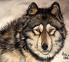 Painted Timber Wolf Artwork  by Shananaghans