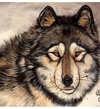 Painted Timber Wolf Artwork  Sticker