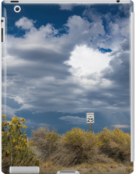 Speed Limit 25 MPH by Andrew Gregor