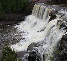 Gooseberry Falls by Elizabeth  Lilja