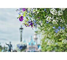 Springtime for Disneyland Photographic Print