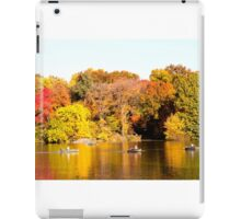 Central Park in the Fall iPad Case/Skin