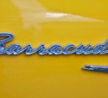Barracuda Sticker