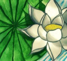 Lily Pad and White Lotus Sticker