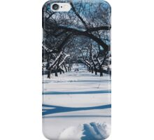 NYC Park in the Snow iPhone Case/Skin