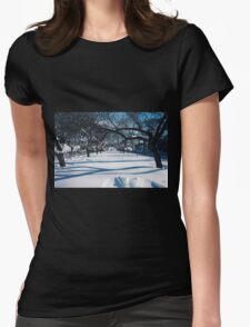 NYC Park in the Snow Womens Fitted T-Shirt