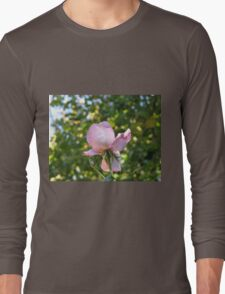 Sweet Frustration - The Rose Beyond The Wall Long Sleeve T-Shirt