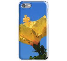Yellow Hibiscus in Bloom iPhone Case/Skin