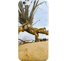 Anza Borrego Ocotillo 3 iPhone Case/Skin