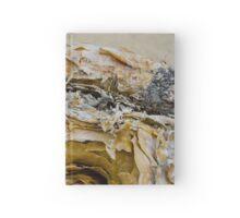 Anza Borrego Ocotillo 4 Hardcover Journal