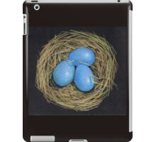 Bird Eggs in a Nest, Color Pencil on Black iPad Case/Skin