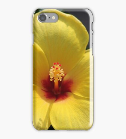 My Yellow Hibiscus iPhone Case/Skin
