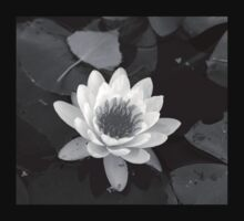 Autumn Water Lily 1 - Black and White Kids Tee