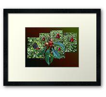 The Cherry Thief Framed Print