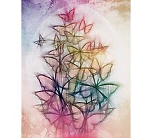 Rainbow Colored Butterfly Sketch Drawing Photographic Print