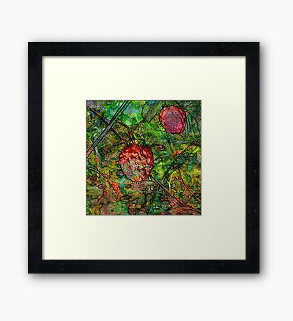 Summer Wine 5 Framed Print