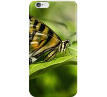 Butterfly Resting iPhone Case/Skin