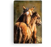 Brotherly Love - Pryor Mustangs Canvas Print