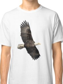 Isolated American Bald Eagle 2016-4 Classic T-Shirt