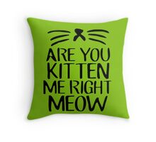 Are You Kitten Me Right Meow Throw Pillow