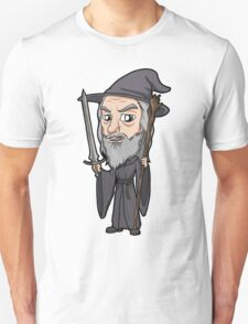 Lord of the Rings - Gandalf the Grey T-Shirt
