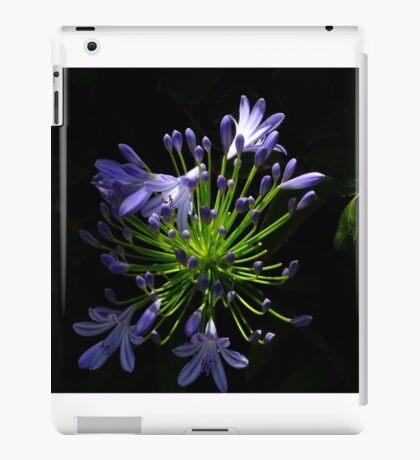 New Zealand Agapanthus iPad Case/Skin