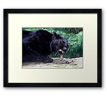 A Ravenous Black Panther Framed Print