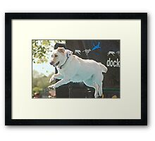Lab Leap Framed Print