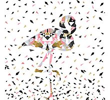 Cute geometric Flamingo abstract design Photographic Print