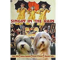 Bearded Collie -  Singin in the Rain Movie Poster Photographic Print