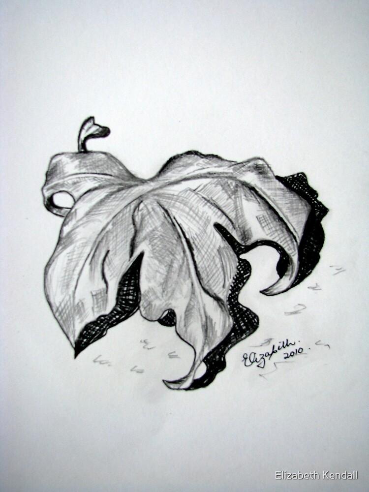 Dry leaf by Elizabeth Kendall