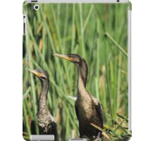 Neotropical Cormorants on Reeds iPad Case/Skin